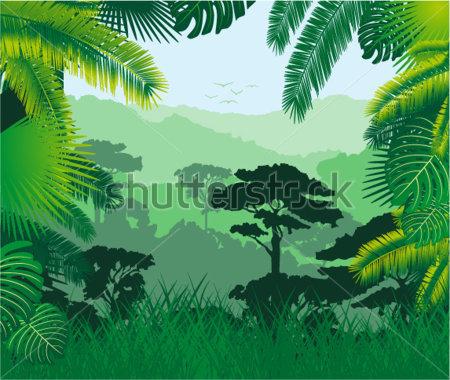 Tropical Rainforest Clipart.