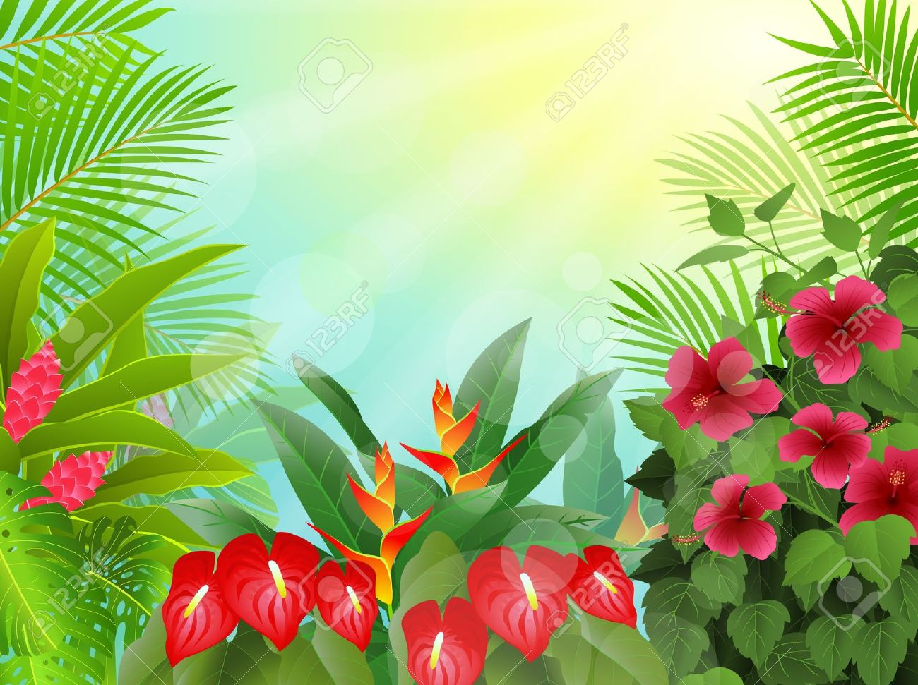 tropical rainforest clipart clipground