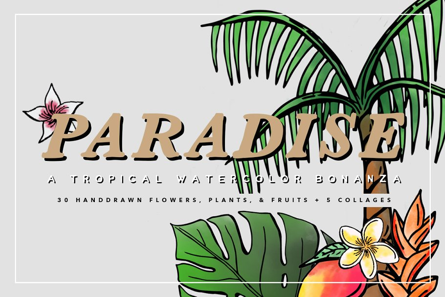 Tropical Watercolor Illustrations ~ Illustrations ~ Creative.