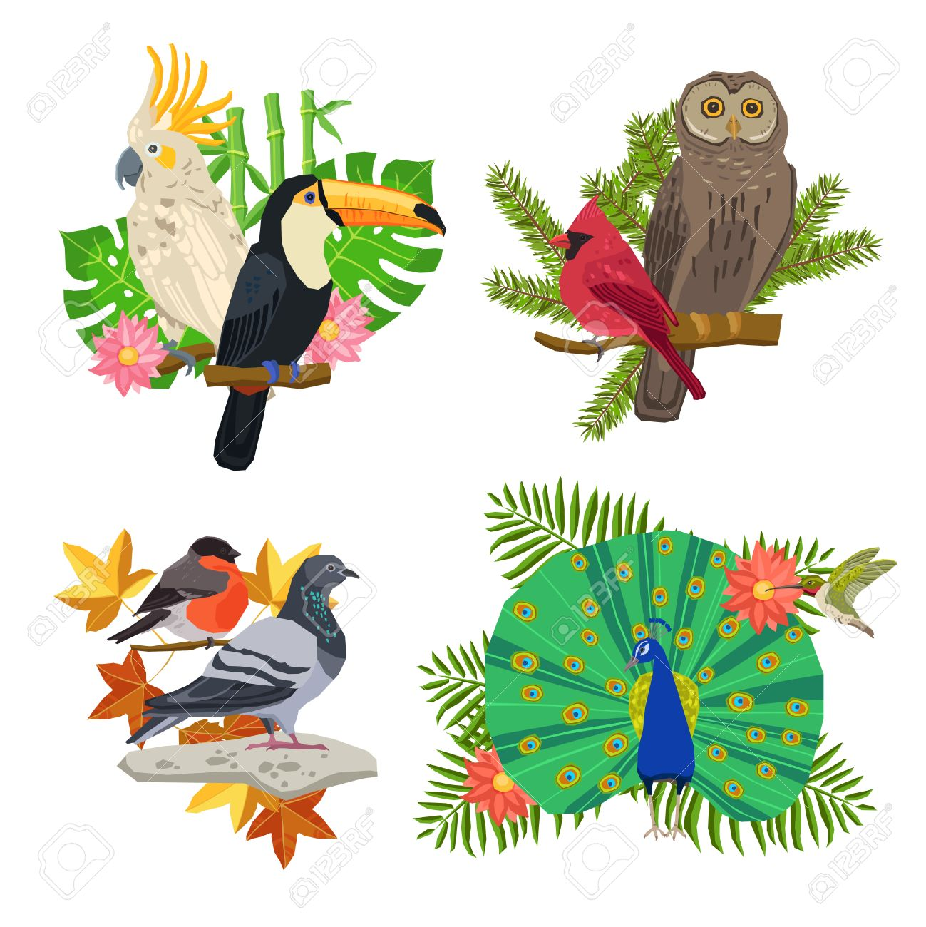 Tropical And Forest Birds On Tree Branches With Flowers Isolated.