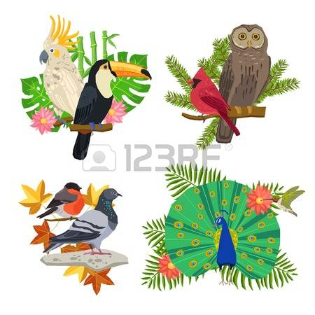 62,173 Tropical Tree Cliparts, Stock Vector And Royalty Free.