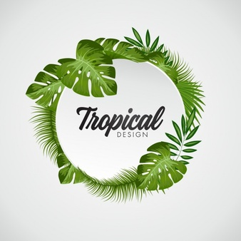 Tropical Vectors, Photos and PSD files.