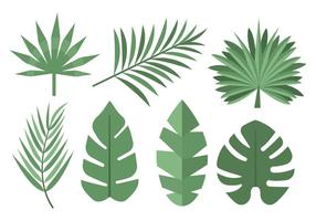 Tropical Free Vector Art.