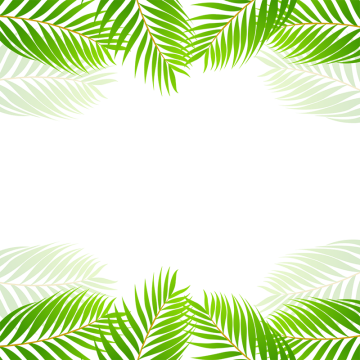 2019 的 Green Tropical Border Vector, Green, Tropical PNG.
