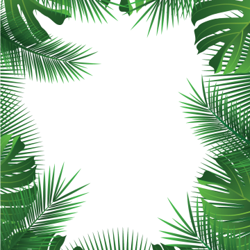 2019 的 Tropical Leaves, Palm, Leaves, Tropical Vector PNG.