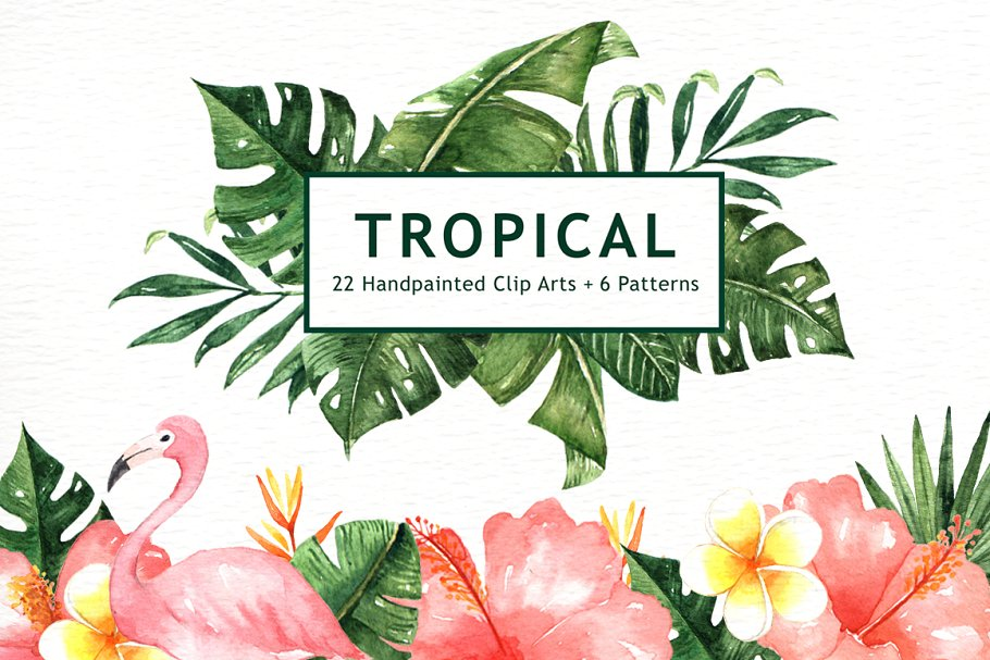 Tropical Leaves Watercolor Clipart ~ Illustrations.