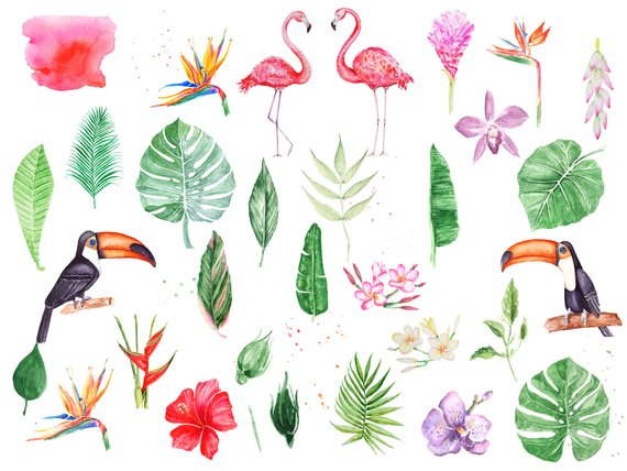 Set of Tropical Watercolor Greenery Cliparts.Leaves, Flowers.