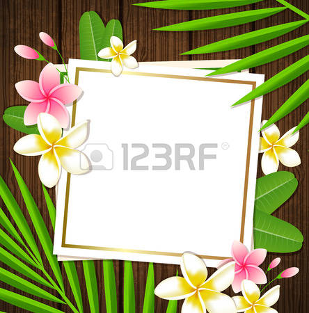 154,095 Woods Background Stock Vector Illustration And Royalty.