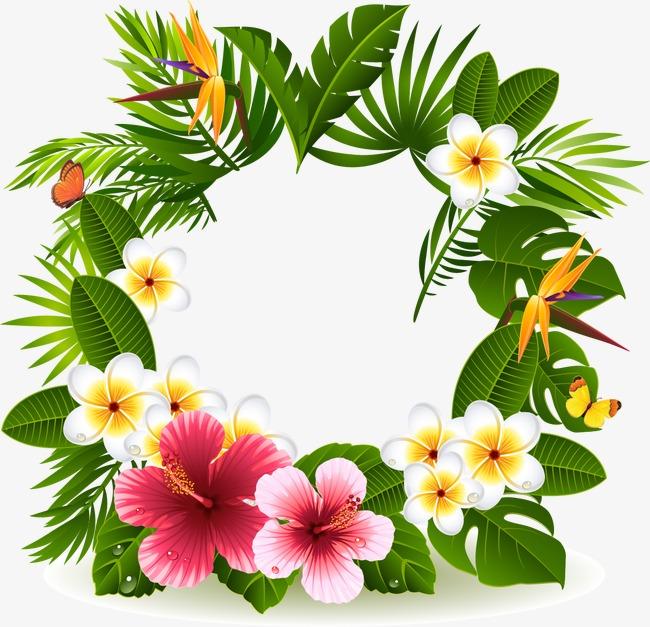 Tropical clipart wreath.