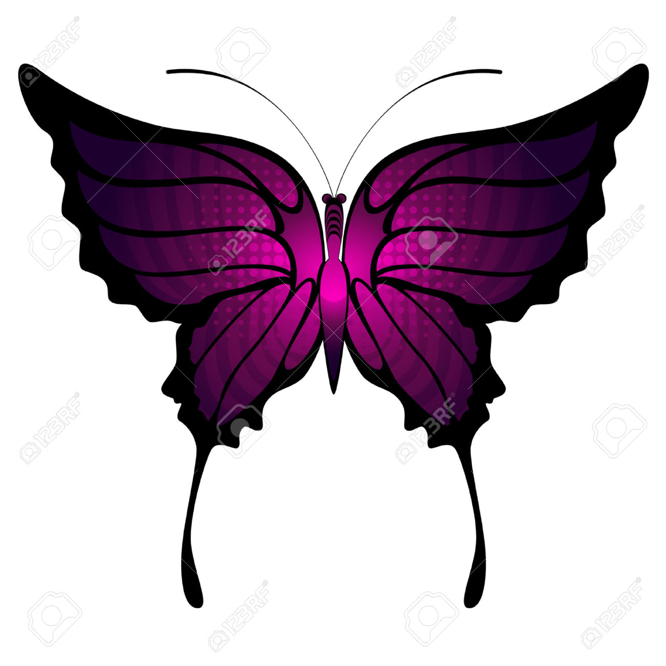 Tropical Butterflies Are Isolated Royalty Free Cliparts, Vectors.