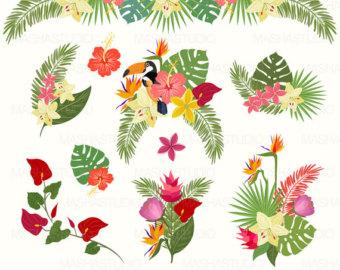Tropical clip art.