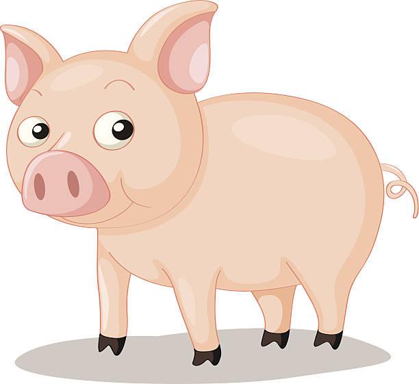 Pig Trotters Clip Art, Vector Images & Illustrations.