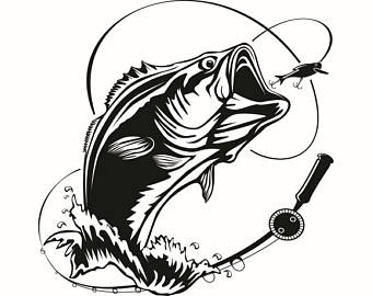 Trout clipart bass fishing pencil and in color trout.