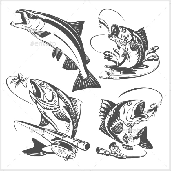 Vintage Trout Fishing Emblems and Design Elements.