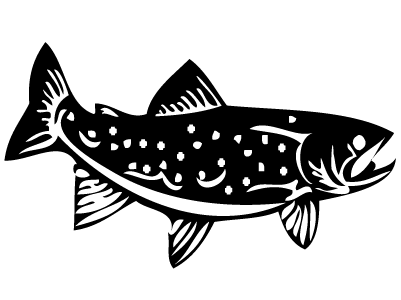 Gallery For > Trout Outline.