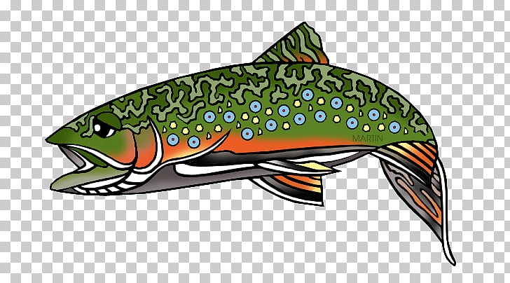 Rainbow trout Free content , Wv s PNG clipart.