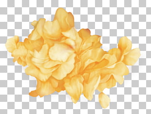 51 troye Sivan PNG cliparts for free download.