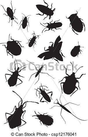EPS Vector of Collection of true bugs csp12176041.