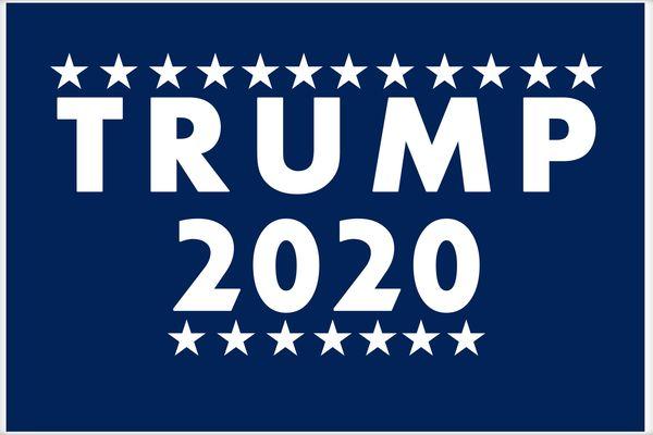 Re Elect Donald Trump 2020 Stars Logo Poster.