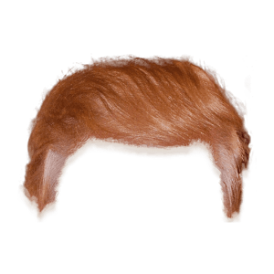 Donald Trump Hair transparent PNG.