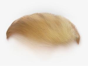 Trump Hair Png PNG Images.