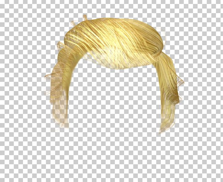 Hair Wig PNG, Clipart, 3d Computer Graphics, Animation.