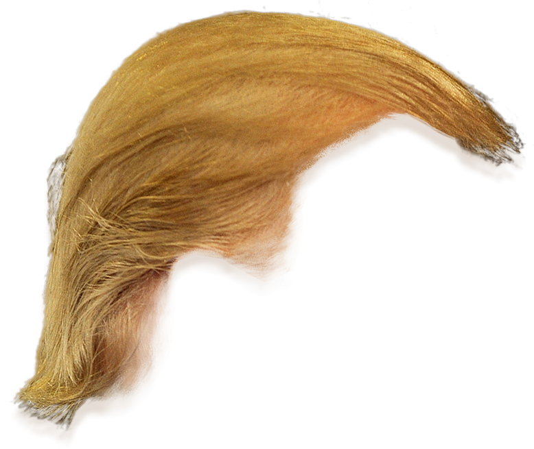 Donald Trump Hair Side View Png Transparent.