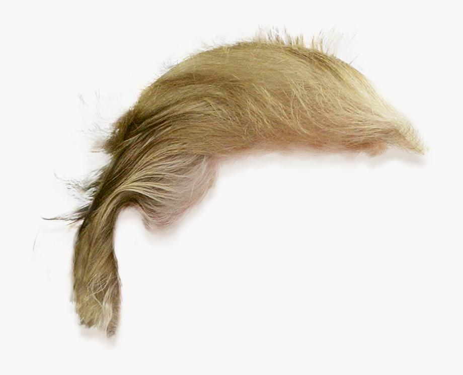 Donald Trump Png Hair.