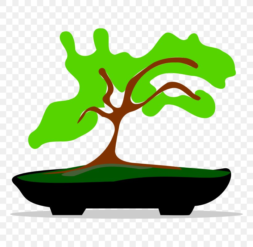 Bonsai Tree Clip Art, PNG, 800x800px, Bonsai, Artwork, Blog.