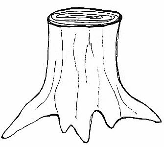 Nice Tree Trunk Clip Art tree trunk clipart black and white.
