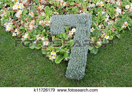 Stock Photograph of Fragment of hours of flowers on the Promenade.
