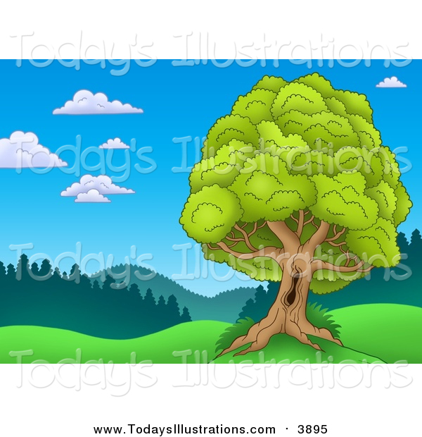 Clipart of a Landscape with a Mature Lush Tree with a Hole in the.
