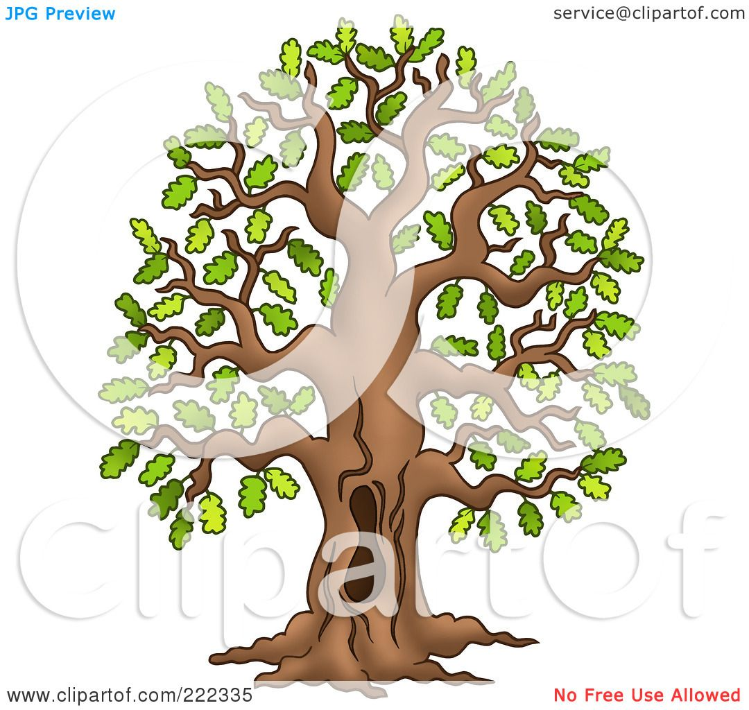Similiar Tree Clip Art Black And White With A Hole Keywords.