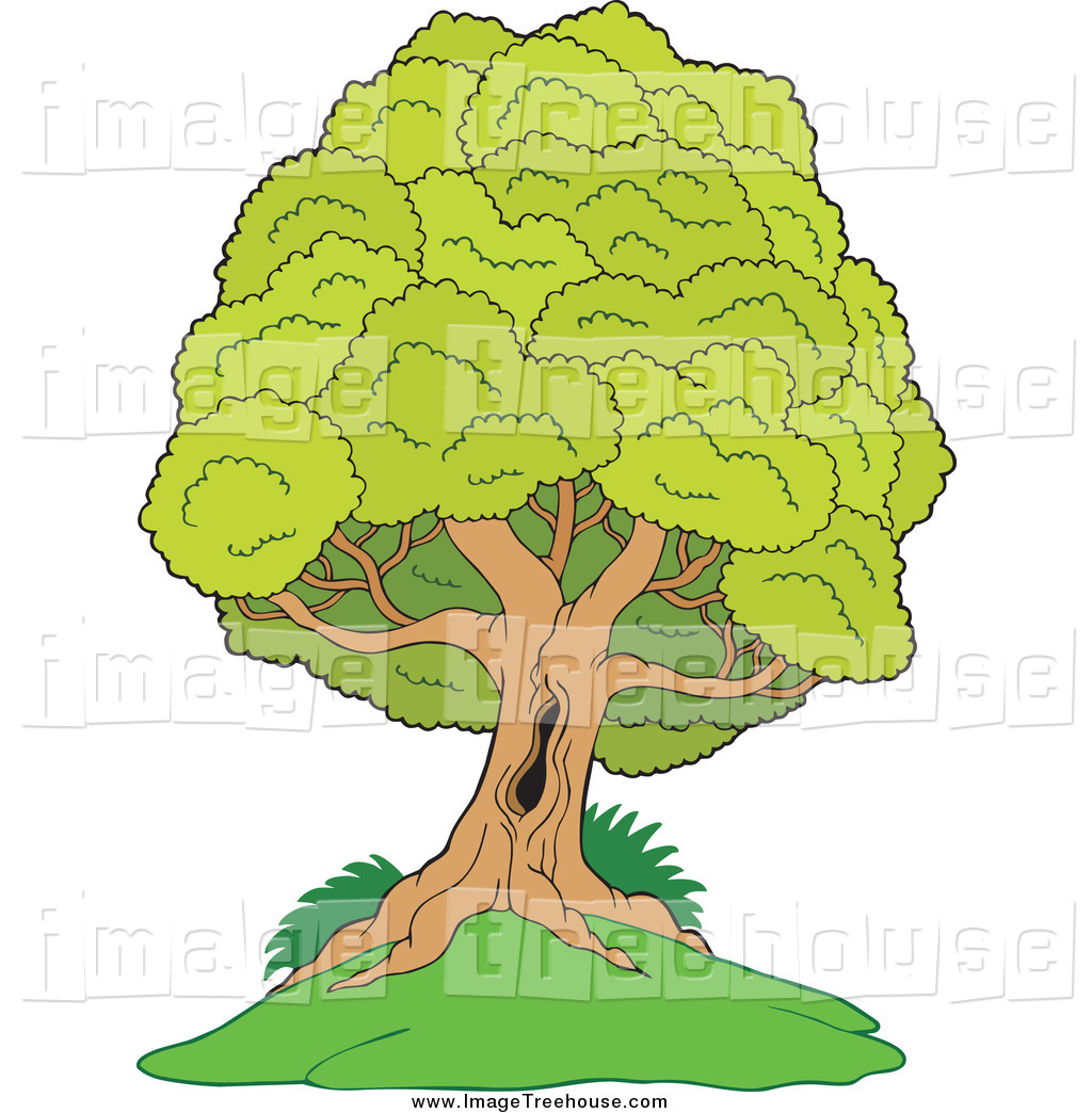 Clipart of a Lush Tree with a Hole in the Trunk, on a Hill, by.
