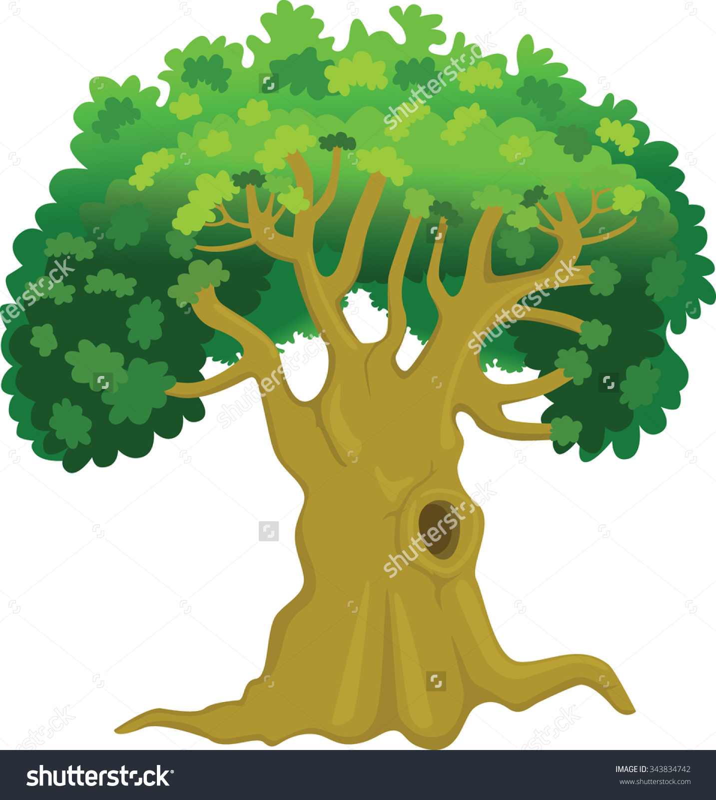 Oak Tree Old Tree Huge Hole Stock Vector 343834742.