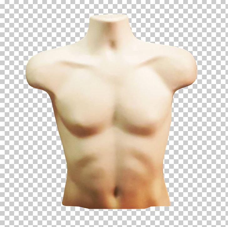 Skin clipart body trunk, Skin body trunk Transparent FREE.