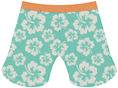 LJS_BNF_Swim Trunks.png.