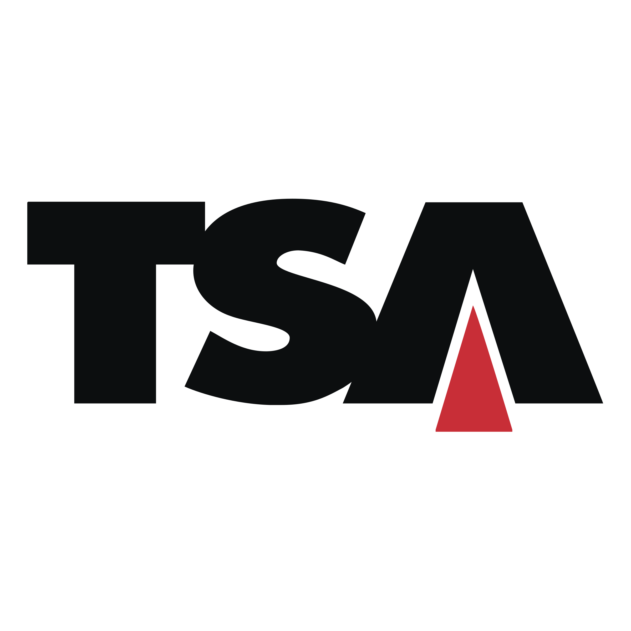 TSA Logo PNG Transparent & SVG Vector.