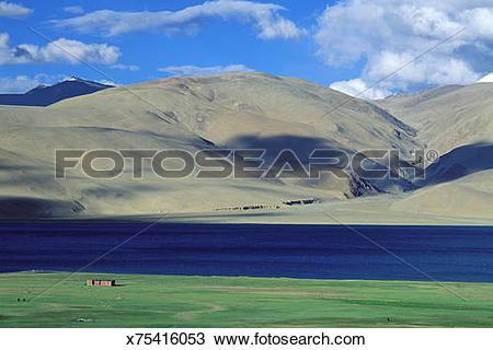 Stock Photo of India,Jammu Kashmir Province,Ladakh,Changtang.