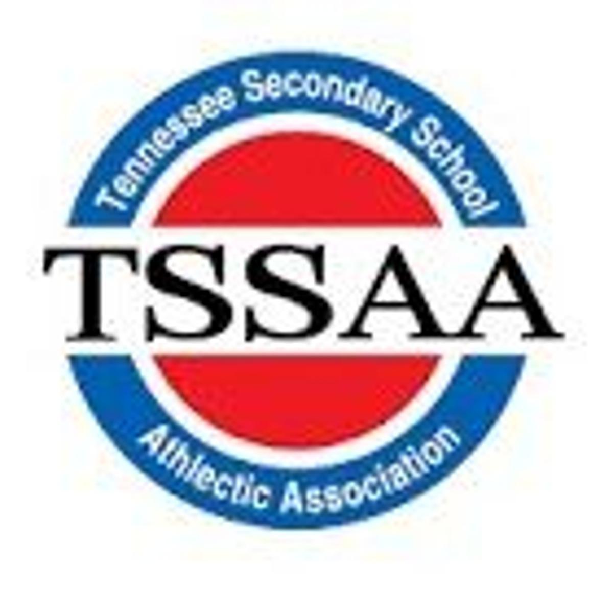 TSSAA WRESTLING: Tennessee High\'s Fields, Sullivan East\'s.