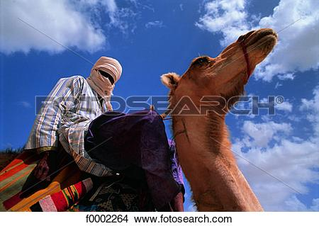 Stock Photo of Algeria, Sahara, Tuareg on dromedary f0002264.