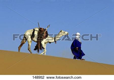 Stock Photo of Caravan leader leading camel in desert, Tuareg.