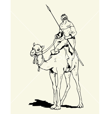 Tuareg camel rider vector by barbulat.