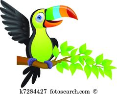 Tucano Illustrations and Clipart. 67 tucano royalty free.