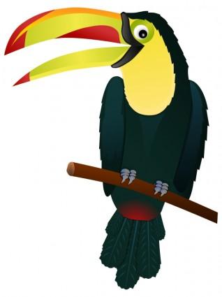 Cartoon toucan pictures 3.