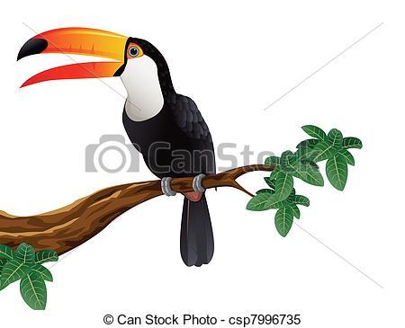 Tucano Clipart Vector Graphics. 33 Tucano EPS clip art vector and.