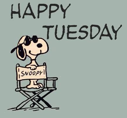 Funny tuesday clipart.