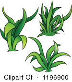 Royalty Free Stock Illustrations of Grasses by dero Page 1.