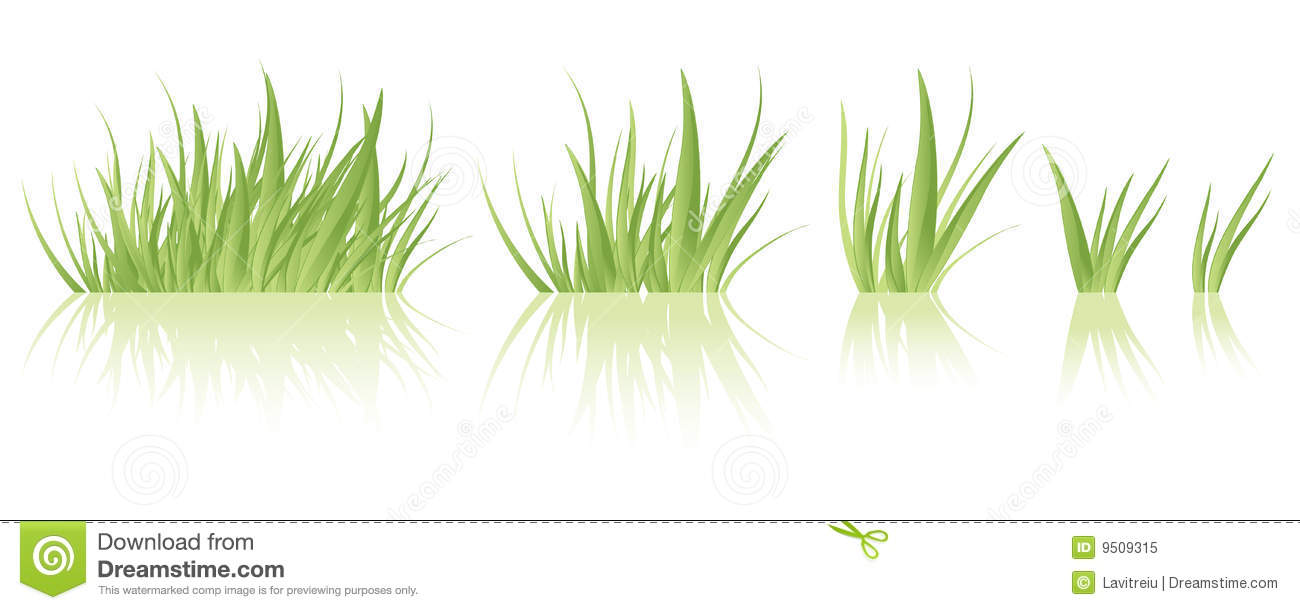 Tuft of grass clipart.