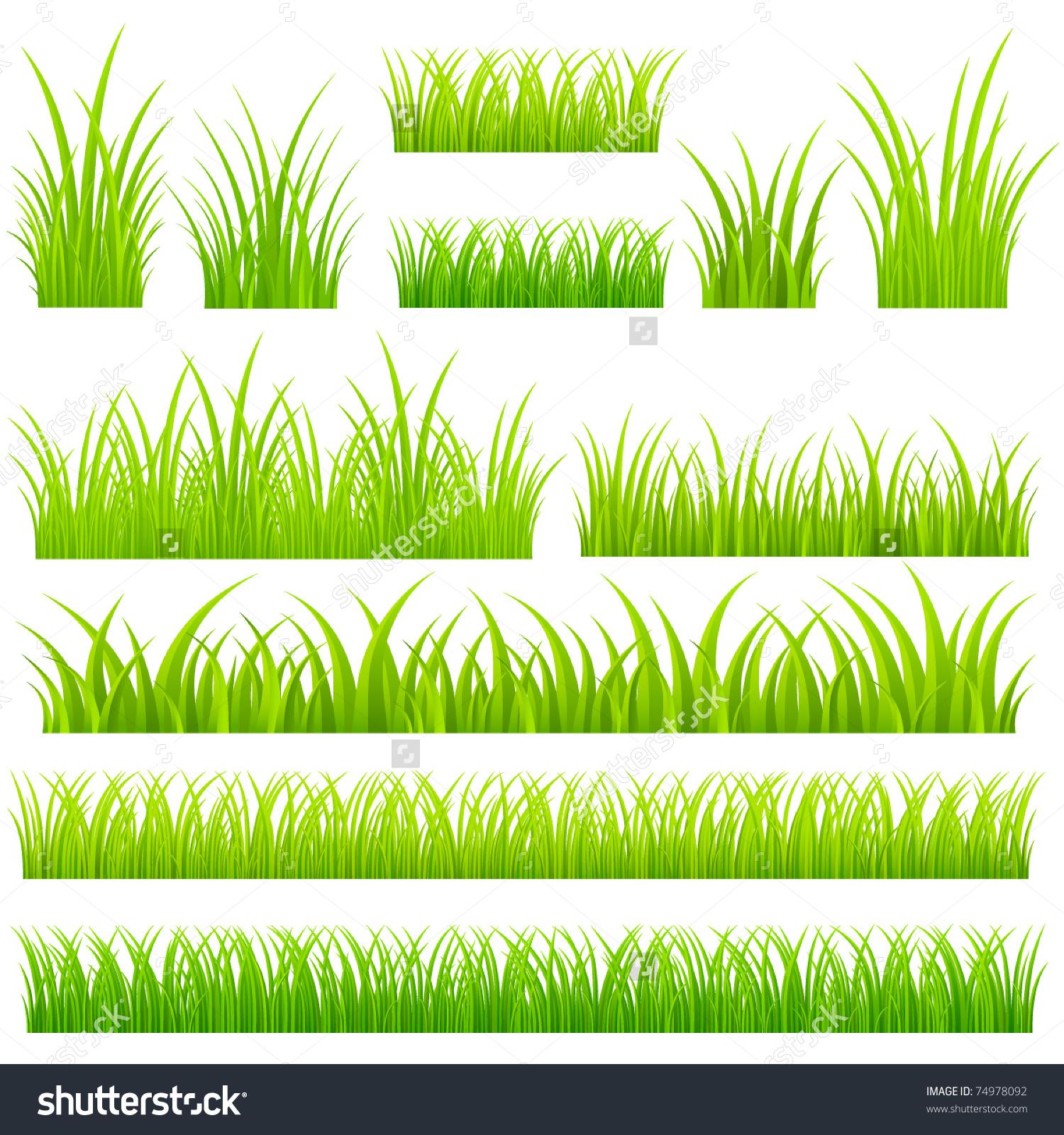 Set Vector Grass Tufts Grass Stock Vector 74978092.